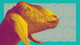 Goat Creative Horizontal