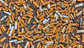 Thousands of cigarette butts on ground