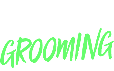 The 2017 Stay Fresh Awards - Grooming Edition