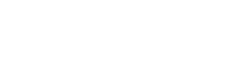 Cassius Navbar Logo white