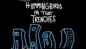 Kondwani Fidel 'Hummingbirds' Book Cover