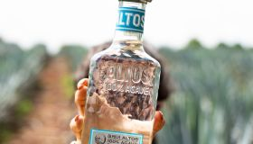 National Tequila Day X Olmeca Altos