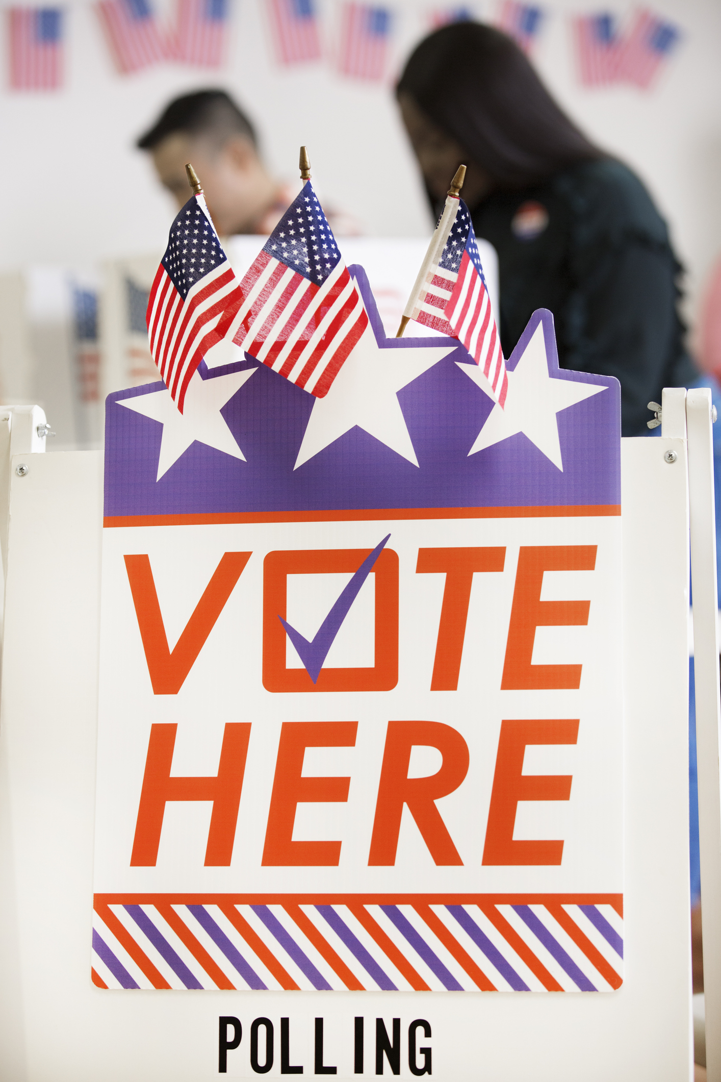 Voter Polling Place