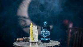 Hendrick's Lunar Gin National Cocktail Day