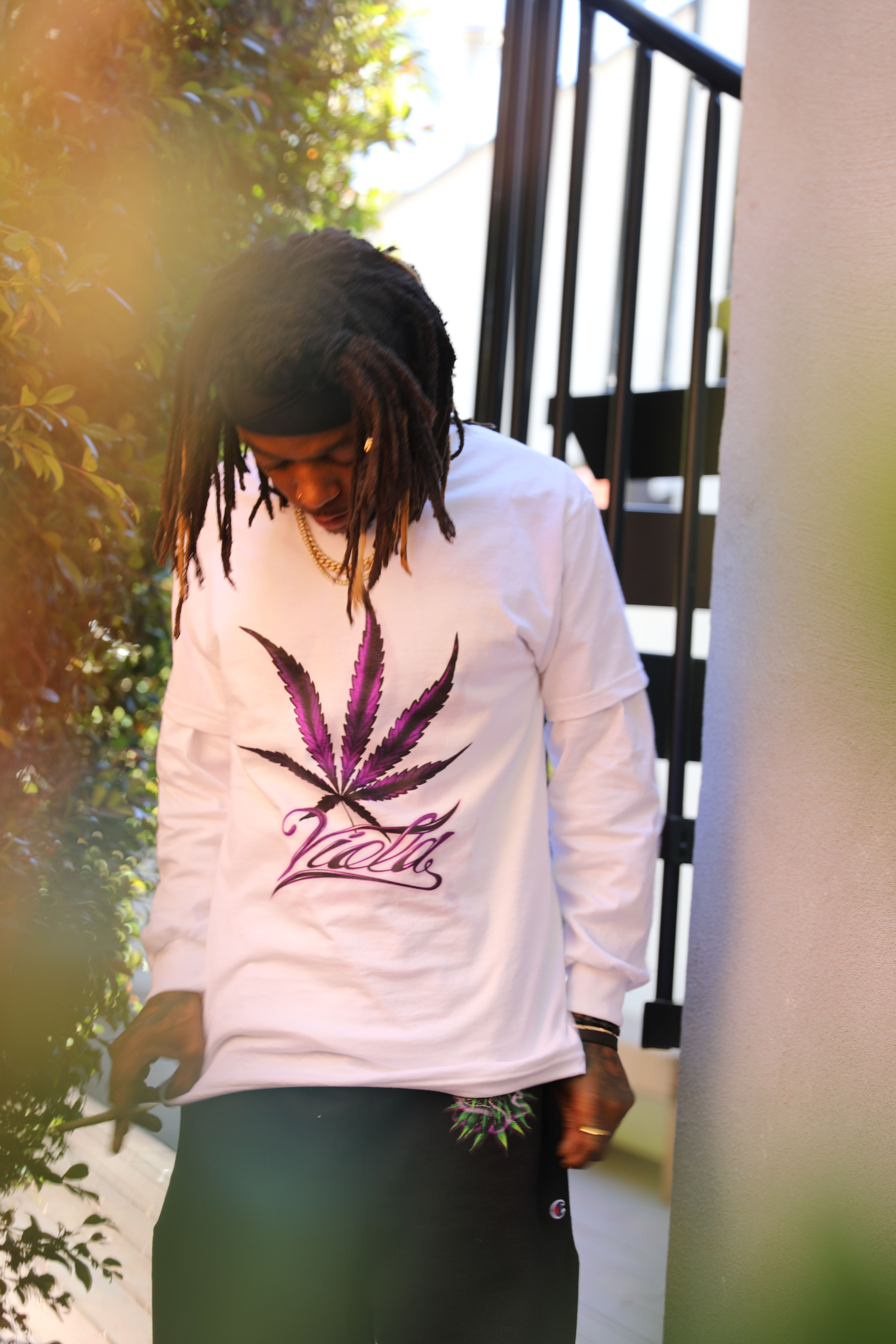 Viola x Anwar Carrots Launch 420 Collection