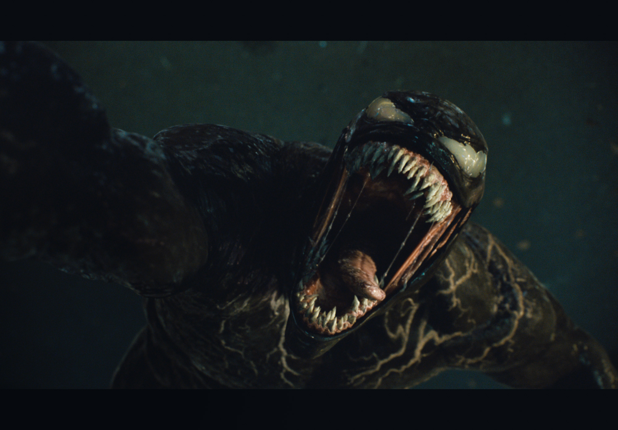 """Watch The First Trailer For """"Venom: Let There Be Carnage"""""""