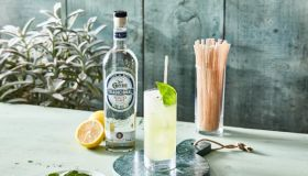 Jose Cuervo National Tequila Day Agave Straws